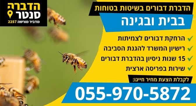 הדברת דבורים עם מדביר דבורים מומלץ