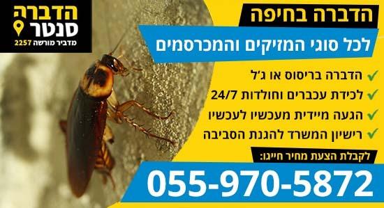 הדברה בחיפה עם מדביר מומלץ