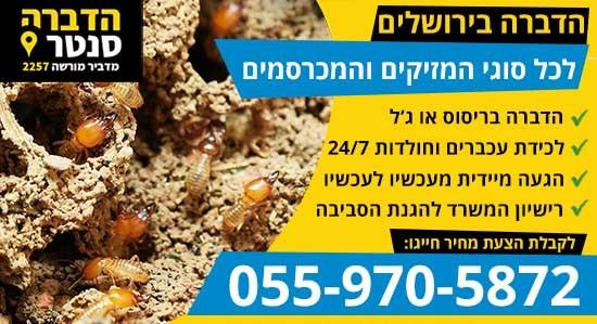 הדברה בירושלים במחיר זול